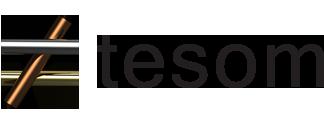 TeSoM :: traduzioni a Prato Toscana